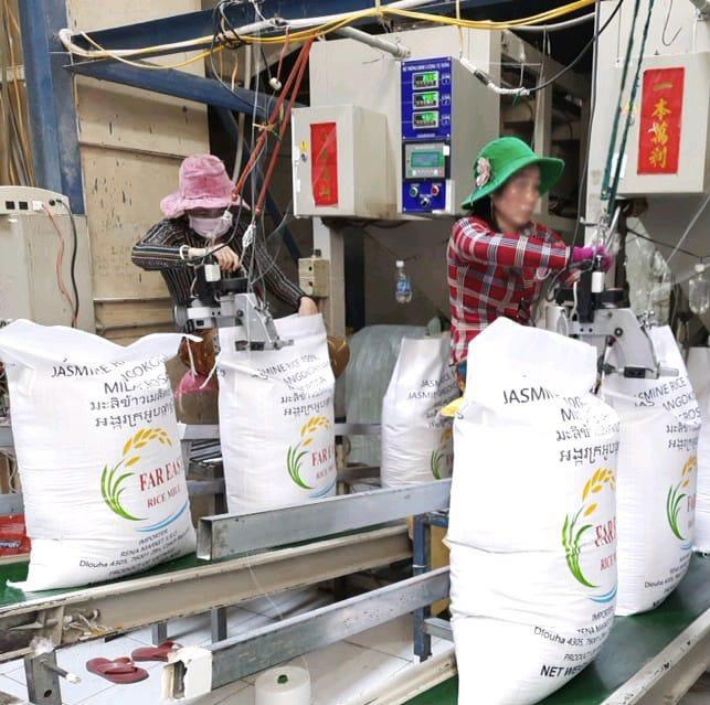 quy trình đóng gói xuất khẩu châu âu